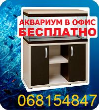 Аквариум бесплатно в Молдове, Кишиневе