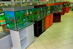 Изготовление аквариумов в Молдове, Кишиневе