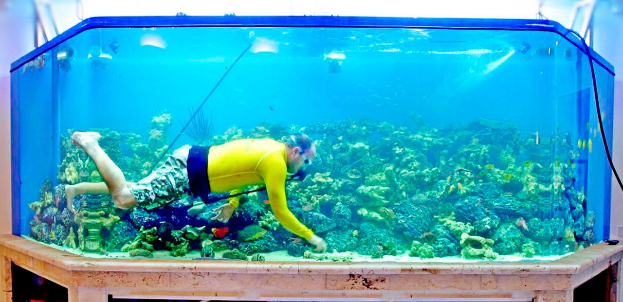 Обслуживание аквариумов и водоемов в Молдове, Кишиневе