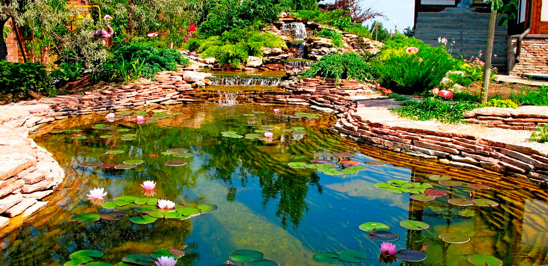 Обслуживание прудов и водоёмов в Молдове, Кишиневе