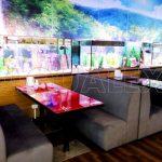 Аквариум псевдоморе для ресторана в Кишиневе