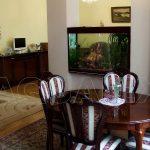 Аквариум разделяющий для гостинной в Молдове