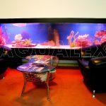 Морской аквариум на тумбе под аквариум в Молдове