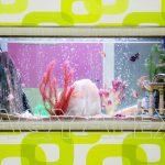 Сквозной аквариум-картина в стене Кишинев